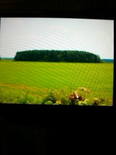 北海道2011「6日目」穏やかな一日